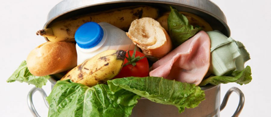 Catering Food Waste KSB Recruitment